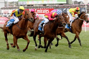 Malaguerra scores narrow win in Darley Classic