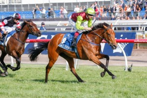 Set Square is one of 19 fillies and mares nominated for the Schweppervescence Trophy.