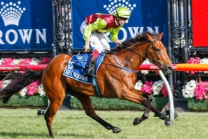 Craig Williams will ride Set Square in the Group 1 Vinery Stud Stakes.