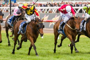Zanbagh is seeking redemption for a poor spring campaign in the Sandown Cup this Saturday.