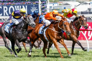 Terravista (centre), Chautauqua (outside), and Lankan Rupee (inside) will all run in the Group 1 Newmarket Handicap.