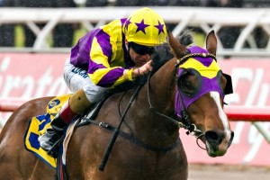 Boomwaa is betting favourite for the 2014 Inglis Classic.