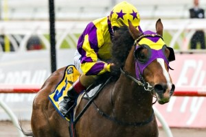 Boomwaa is included in the 2014 Inglis Classic final field and barrier draw.