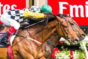 Dual Moonee Valley Cup winner Precedence.