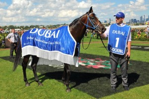 Shocking celebrating victory in the 2011 Australian Cup. Photo: Taron Clarke.