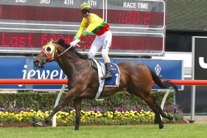 2016 William Reid Stakes Tips and Betting Preview