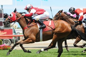 Endless Shadow won the Magic Millions Fillies & Mares Handicap in an upset on Saturday.