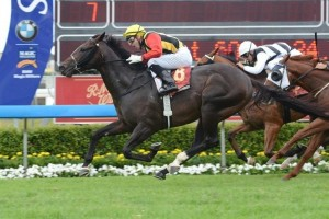 Randwick Preview – 2013 The Shorts Attracts Spirit Of Boom