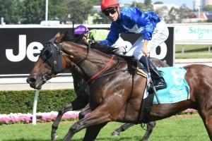 2017 Coolmore Classic Aim for Flying Jess
