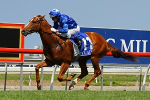 Racy will take on Wicked Intent (pictured) in the Magic Millions Classic after winning at Warwick Farm on Wednesday.