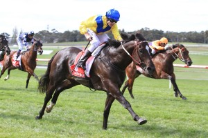 Rageese remains prominent in 2016 Railway Stakes betting. Photo: Ultimate Racing Photos