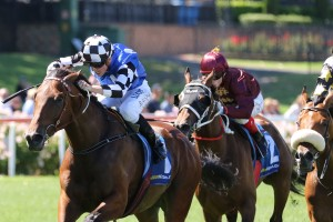 2017 Launceston Cup Results: Big Duke Beats Count Da Vinci
