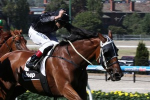 2015 Peter Young Stakes Tips and Betting Preview