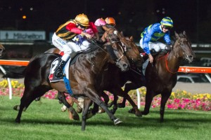 Spirit Of Boom has produced a strong sprint to win the 2014 Group 1 William Reid Stakes