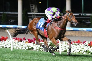 2017 Memsie Stakes Target for I Am A Star