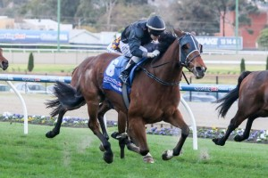 Mourinho is one of two late entries for the Australia Stakes at Moonee Valley on Saturday.