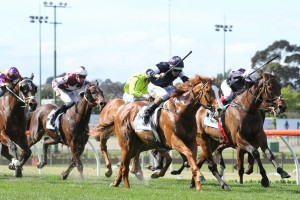 2017 Doomben Cup Bid for Chance To Dance