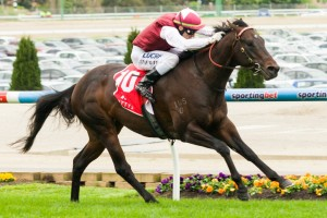 Kuroshio is likely to return for the Group 1 Oakleigh Plate