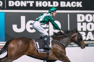 Tommy Berry will partner AJ Scahill Stakes second favourite Watermans Bay.