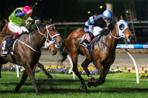 Cult hero The Cleaner (inside) headlines the capacity field for the 2014 Railway Stakes this Saturday.