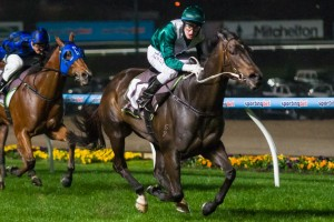 2014 William Reid Stakes Betting Preview and Tips