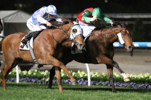 Escado was too tough for his rivals in the 2015 JRA Cup at Moonee Valley. Photo by: Ultimate Racing Photos