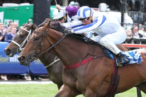 Nurse Kitchen will take her place in Saturday's Vinery Stud Stakes field at Rosehill. Photo: Ultimate Racing Photos