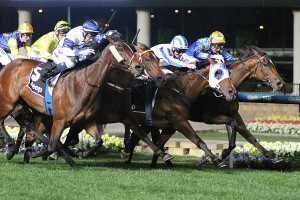 Imperial Lass (centre, white blinkers)
