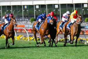 Buffering (centre) is struggling to regain match fitness following a brutal run in the Manikato Stakes.