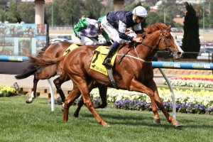 The United States is our tip to win Saturday's 2016 Crystal Mile at Moonee Valley. Photo: Steve Hart