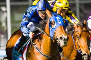 2013 Manikato Stakes Results – Buffering Wins First Group 1