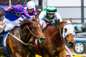 Toydini and Blake Shinn will combine again, after winning the Crystal Mile, in the 2013 Emirates Stakes at Flemington this afternoon.