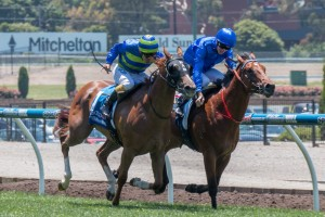 ADAPT Australia Handicap winner Bantam (inside) will now be aimed towards the Group 1 Blue Diamond Stakes.