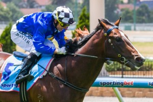 Chivalry will resume in this weekend's Group 3 McNeil Stakes at Caulfield