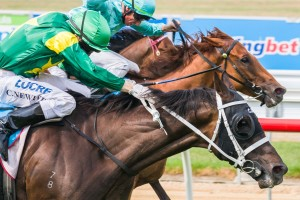 Instrumentalist caused a huge boil-over to win the 2014 Mornington Cup