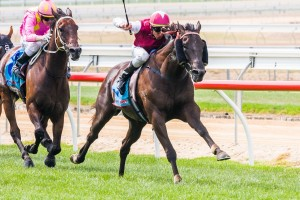 Knoydart produced one of the season's best sprints to claim the 2014 Hareeba Stakes
