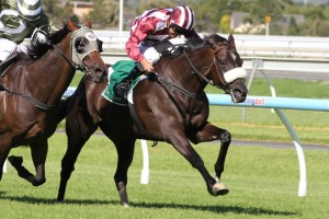 Distillation Claims 2014 Group 3 Lord Reims Stakes