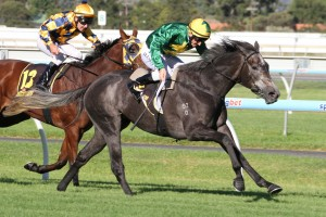 Girl In Flight will contest the 2014 Australasian Oaks
