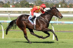 Minaj is currently outright favourite in betting markets for success in the 2014 DC McKay Stakes