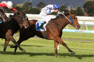 Kushadasi wins the 2014 South Australian Derby