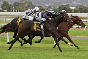 Abbey Marie finished over the top of Silent Sedition to win the Australasian Oaks. Photo by: Jenny Barnes
