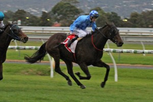 Queen Of The South Stakes odds - Ladbrokes.com.au
