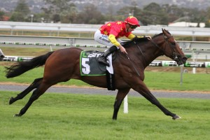 Super One scored his maiden Australian race win in the McKay Stakes at Morphettville on Saturday. Photo by: Jenny Barnes