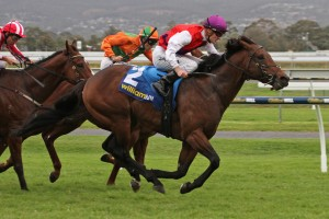 Nicoscene claims his first black-type win in the 2015 Euclase Stakes at Morphettville
