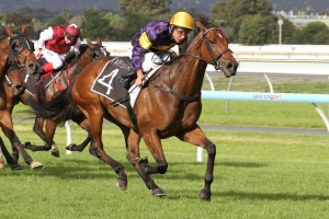 Rhythm To Spare claims victory in the 2014 R.A. Lee Stakes