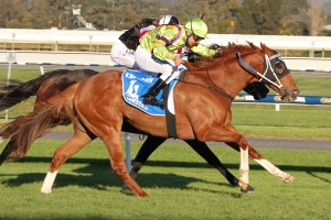 2015 The Goodwood Winner Flamberge Back in Form