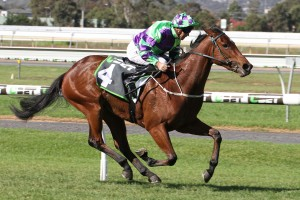 Sunline Stakes 2017 Betting Tips & Update