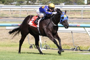Boristar has found his best form ahead of the Chester Manifold Stakes.