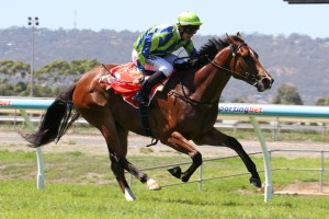 Get The Nod will target the 2015 Stradbroke Handicap. Photo: Jenny Barnes