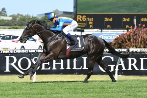 Music Magnate Leads Victory Stakes 2017 Betting